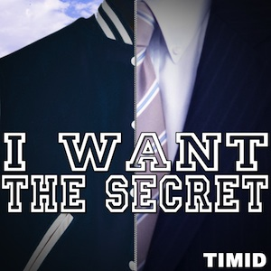 Timid-i-want-the-secret-coverlowres